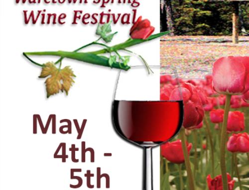 Waretown Wine Festival 2019 Supports Sylvia's Children