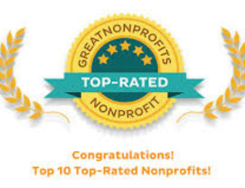 We Made the 2018-2019 List of Top-Rated Non-Profits!